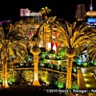 las-vegas-photography-07