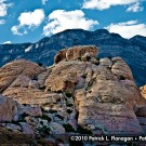 red-rock-canyon-photography-10