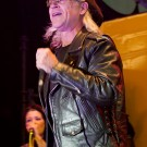 Men Without Hats Performance